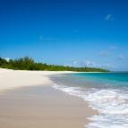 Bikini Atoll Teaser
